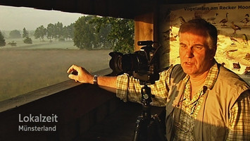 Felix Büscher, Foto Büscher,